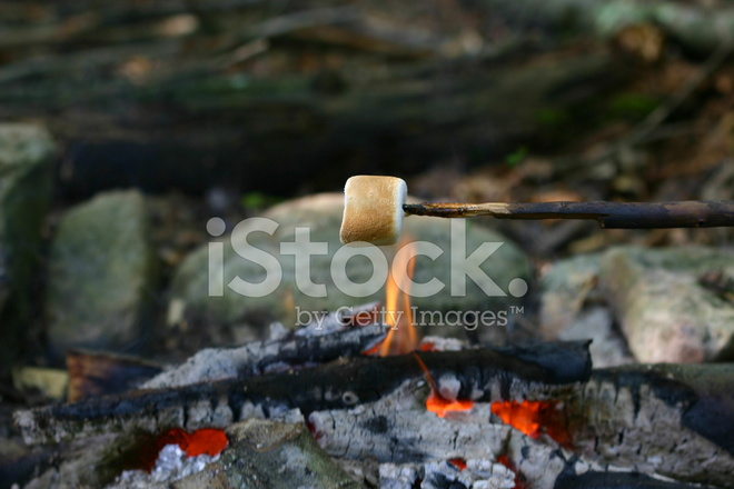 marshmallow roasting over an open fire stock photos freeimages com