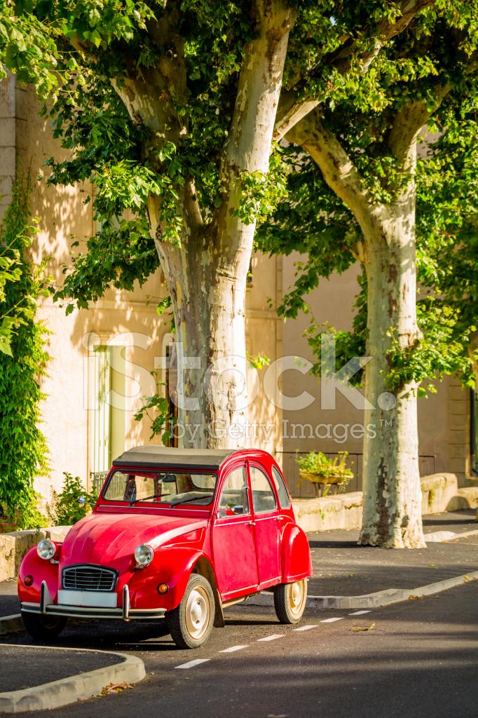 Car Parked Under Tree
