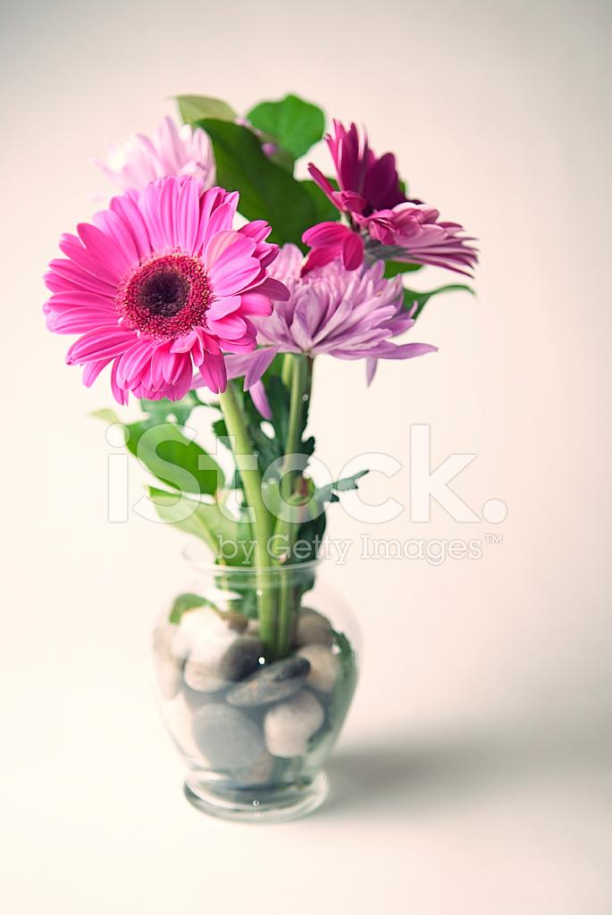 Gerberas Rosas DE Ramo DE Flores En Jarrón DE Cristal Con Agua ...