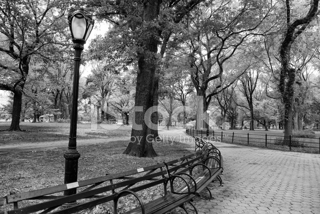 Classic Urban Landscape Central Park Benches New York City Stock