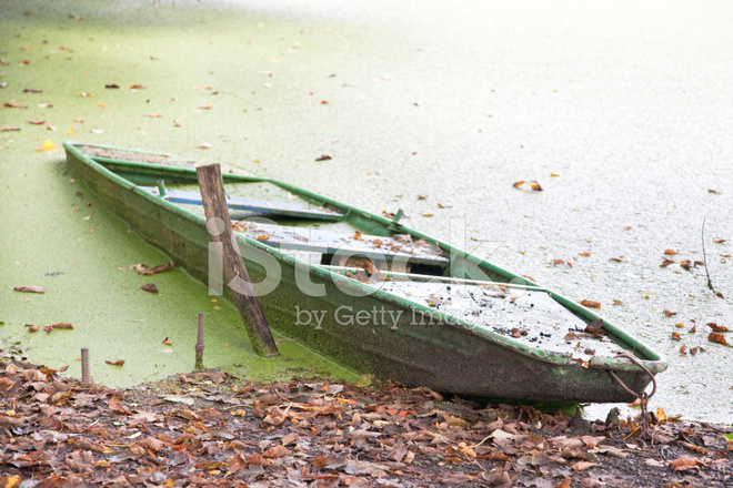 Old fishing boats on algae pond stock photos for Pond fishing boats