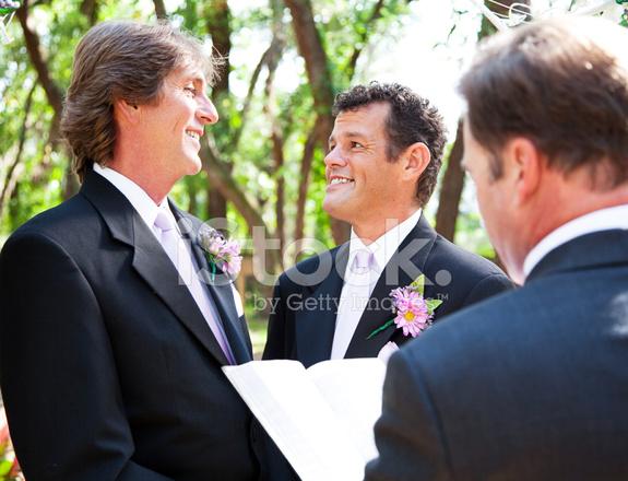ślub Gejów Razem Dla życia Zdjęcia Ze Zbiorów Freeimagescom