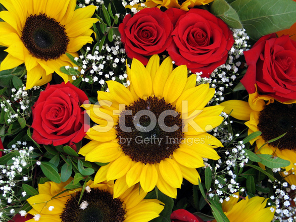 sunflowers and roses stock photos freeimages com free birthday cake clipart for 100th birthday free birthday cake clip art images