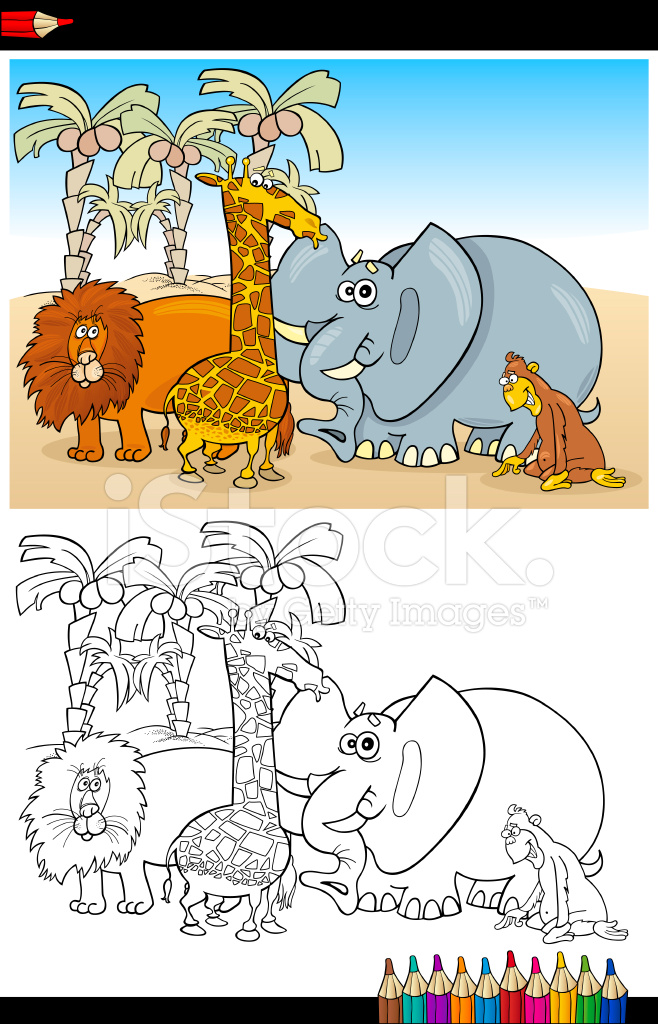 Safari Salvaje Animales Para Colorear Stock Vector