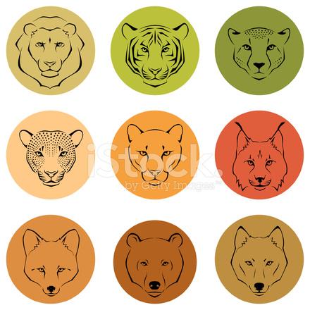 Vahşi Hayvanlar çizgi çizimleri Stock Vector Freeimagescom