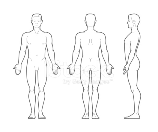 Plain Illustration Of The Male Body
