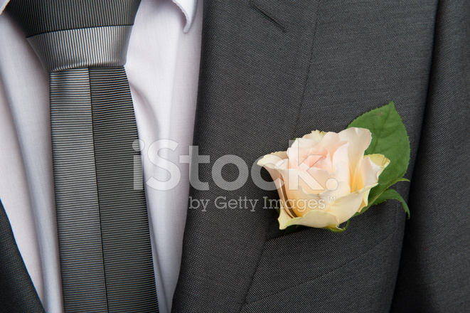 5d7d67e1e295 Premium Stock Photo of Rose Boutonniere Flower on Groom's Wedding Coat