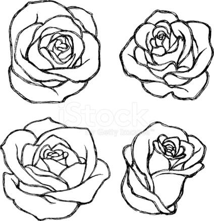 conjunto de desenho flor rosa stock vector freeimages com
