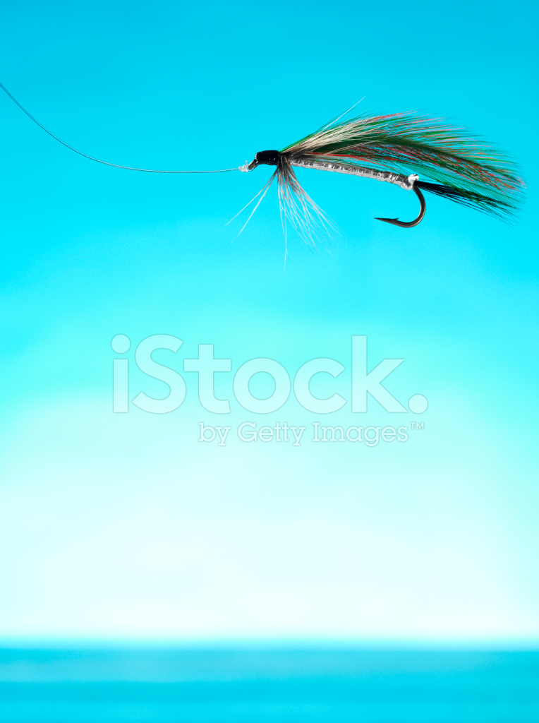 Fly fishing feather on blue stock photos for Fly fishing feathers
