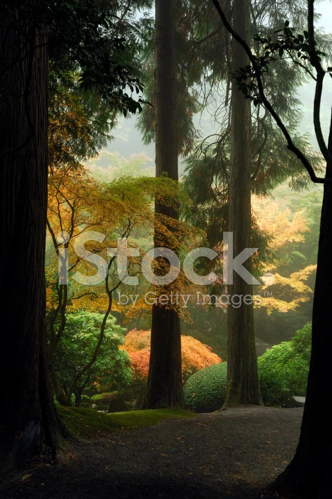 Japanese garden path stock photos for Japanese garden path