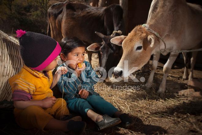 Echte Mensen Uit Landelijke India Farmers Kinderen Eten
