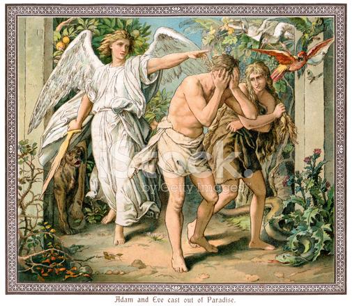 イヴ 林檎 と アダム