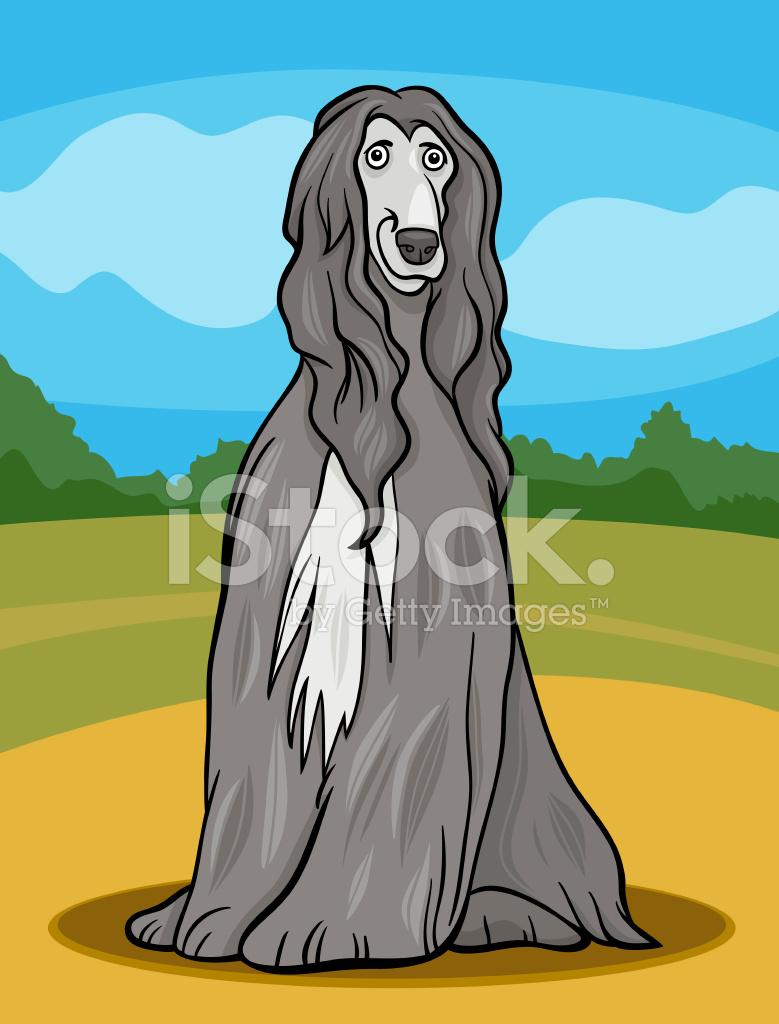 Illustrazione di cartone animato cane levriero afgano stock vector