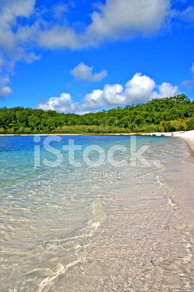 The Terrain For Fraser Island