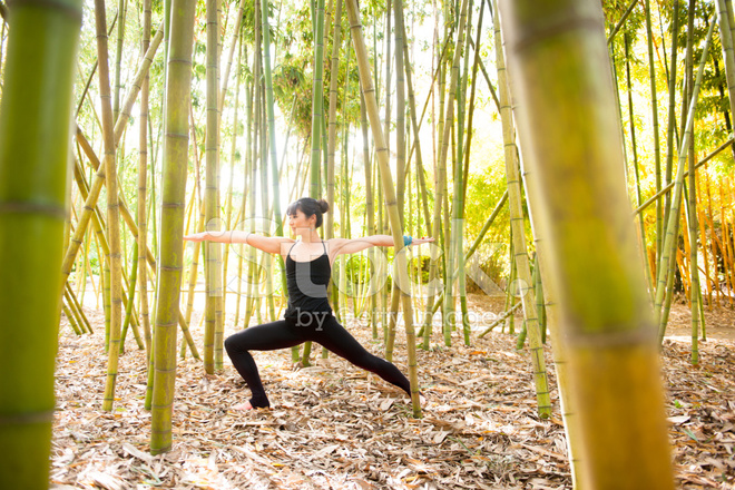 Yoga IN Bamboo Forest stock photos - FreeImages.com