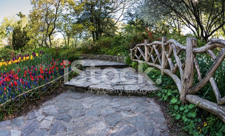 central park new york city shakespeare garden - Shakespeare Garden Central Park