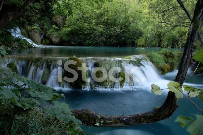 Отображение результатов 1 - 60 всего 62489 для frost waterfalls