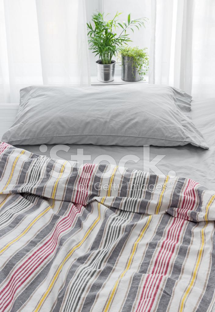 Grune Pflanzen Dekoration Ein Schlafzimmer Stockfotos Freeimages Com