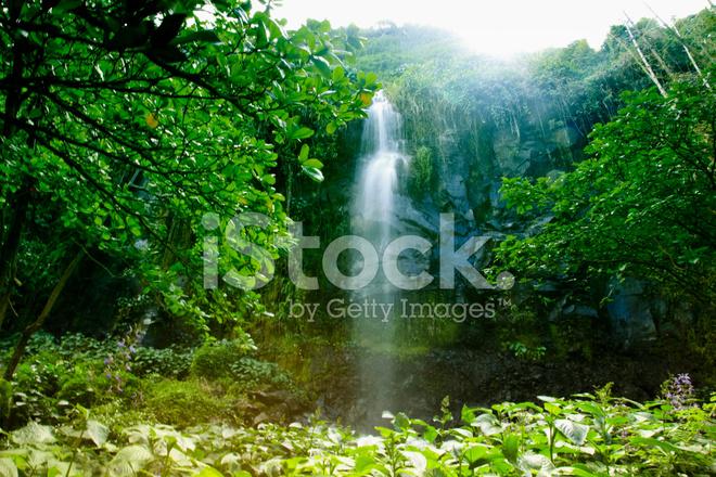 peaceful waterfall on reunion island east africa indian stock