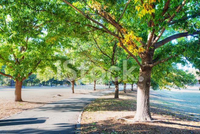Piedmont Park Em Atlanta Fotos do acervo - FreeImages com