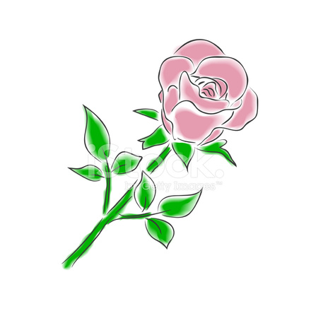 Watercolor Rose Stock Vector Freeimages Com