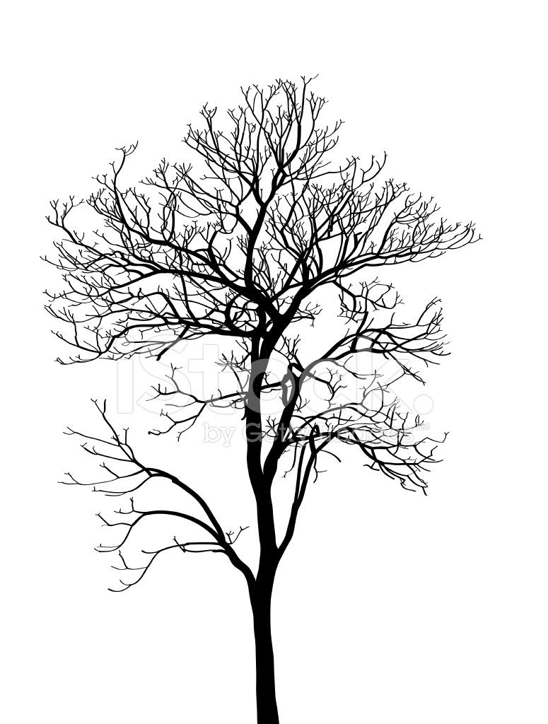 Arbre mort sans feuilles vector illustration a mis au - Arbres sans feuilles ...