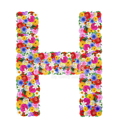 Letter h of the alphabet in different flowers stock photos premium stock photo of letter h of the alphabet in different flowers thecheapjerseys