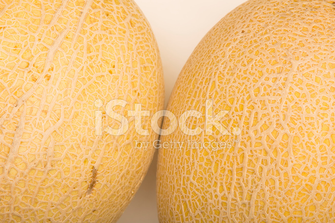 Cantelope Stock Photos Freeimages Com See more ideas about cantaloupe, cantaloupe benefits, cantaloupe and melon. cantelope stock photos freeimages com