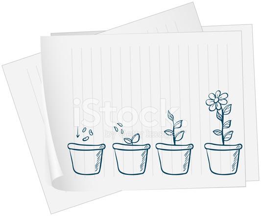Papier Avec Le Dessin D Une Plante Croissante Stock Vector
