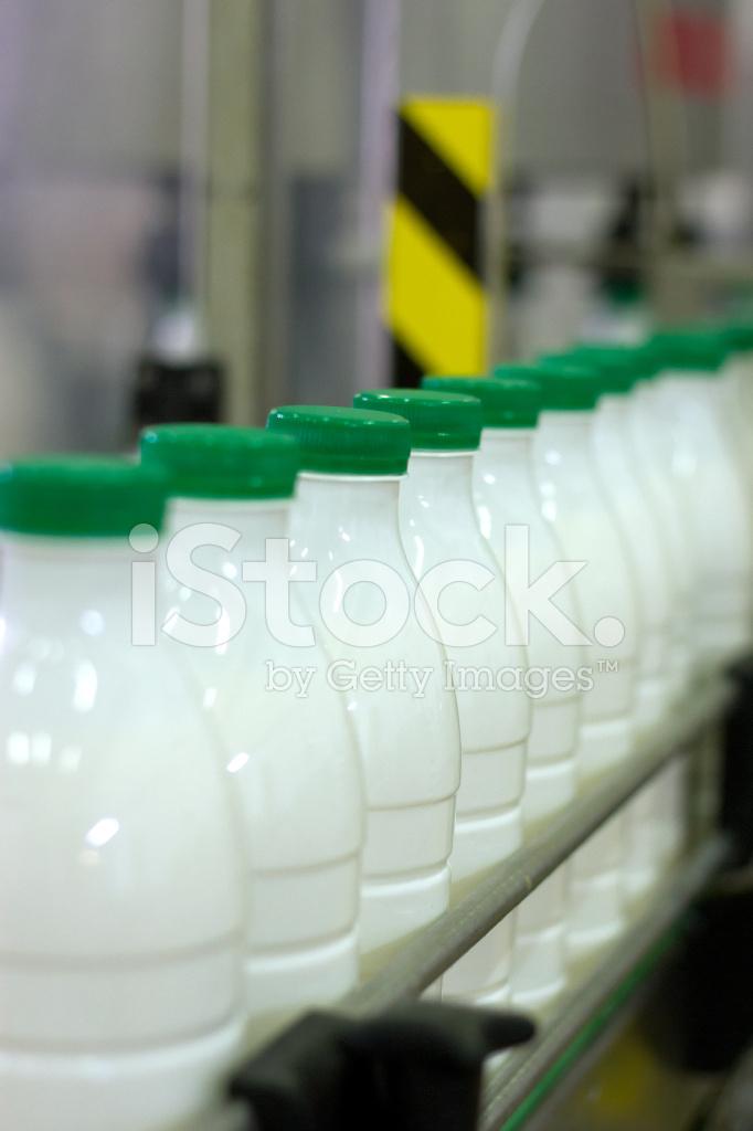 конвейер молока