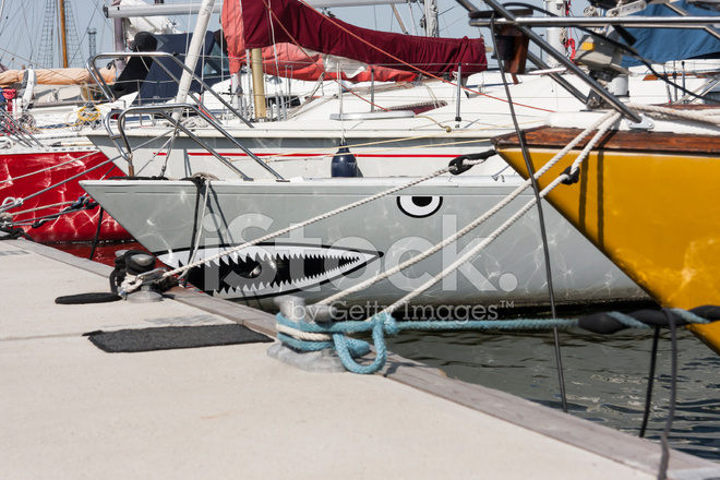 Yelken Gemi Köpekbalığı Boyama Stok Fotoğrafları Freeimagescom