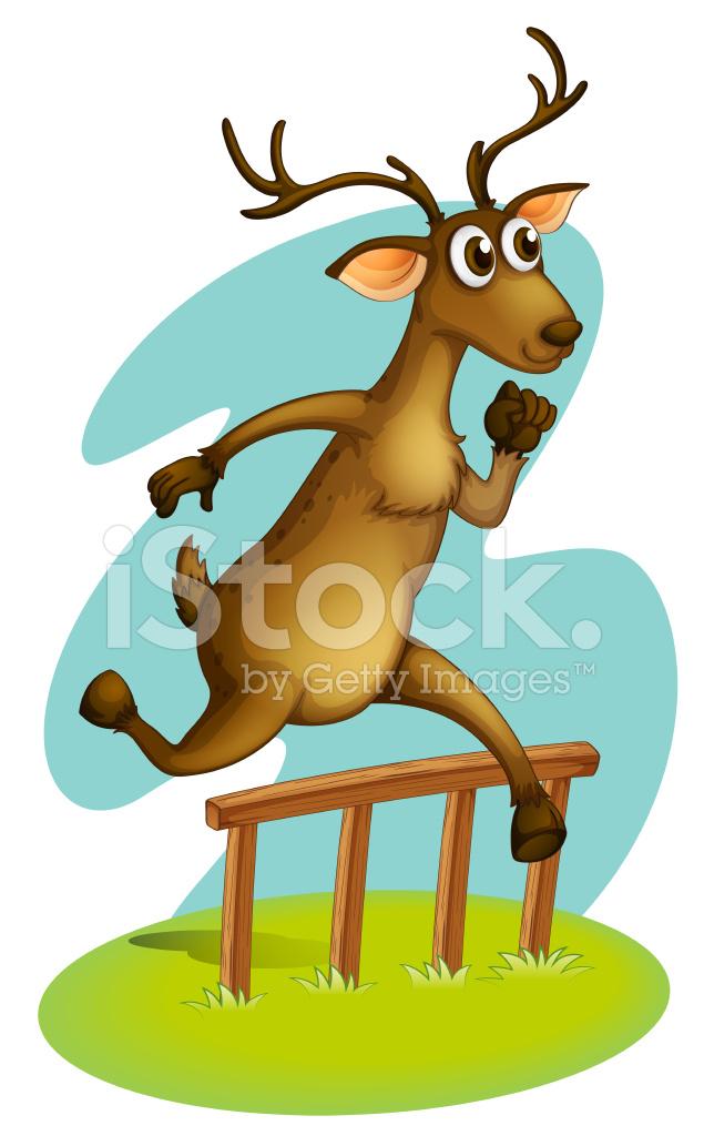 Deer Fencing Deer Jumping on The Fence
