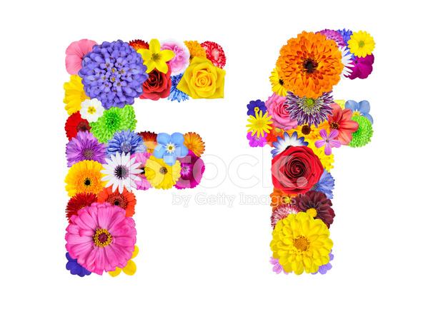 Oslikaj slova  azbuke - Page 19 26223262-flower-alphabet-isolated-on-white-letter-f