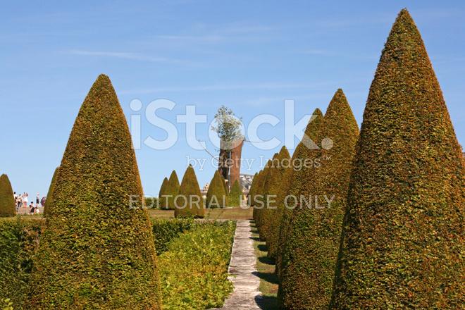 Paleis Van Versailles Tuin.Giuseppe Penone Sculptuur In Het Paleis Van De Tuin Van Versailles