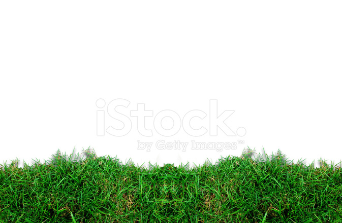 green grass field animated. Green Grass Frame Field Animated