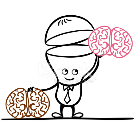 Refresh The Brain Stock Vector - FreeImages.com