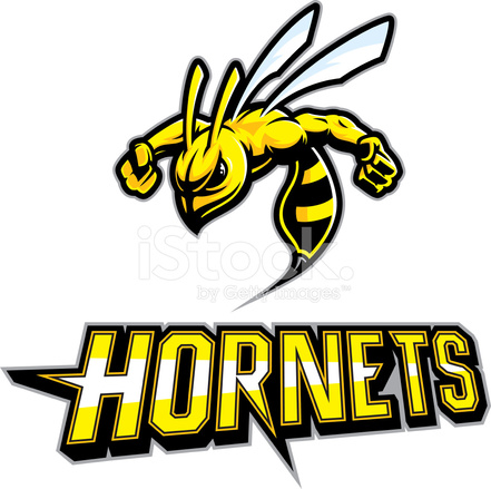 Hornet Mascot Arms Out Stock Vector - FreeImages.com