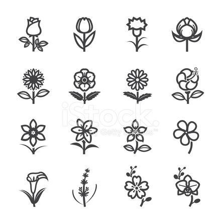 35 furthermore Ramo Di Melo In Fiore besides 124 moreover Heart Tattoo Gallery as well Cool Tattoo Design Outline. on blossom home designs
