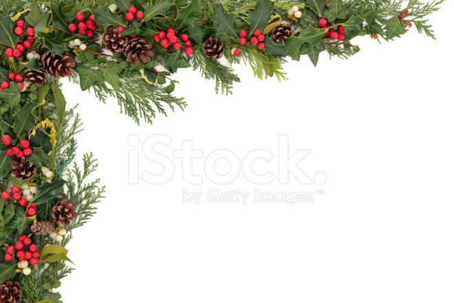 Christmas floral border stock photos freeimages
