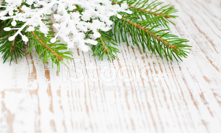 Christmas Border With Pine Tree Stock Photos Freeimages Com
