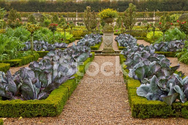 French vegetable garden stock photos for French vegetable garden design