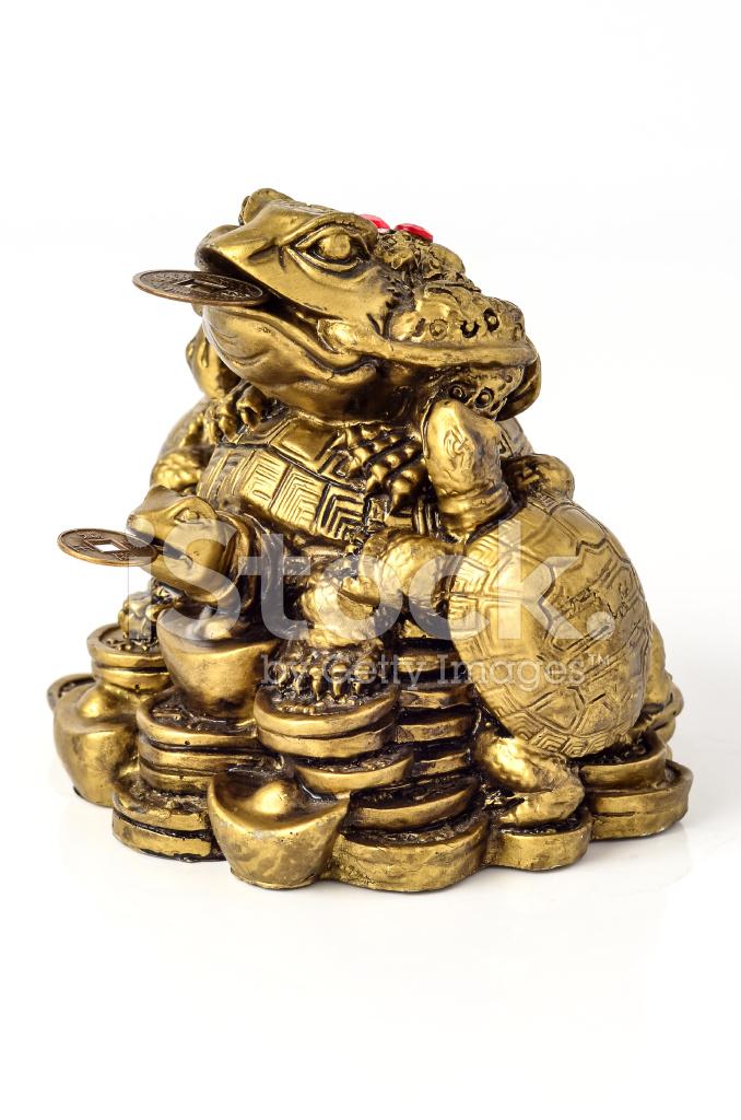 Chinesische Feng Shui Frosch Mit Münzen Stockfotos Freeimagescom