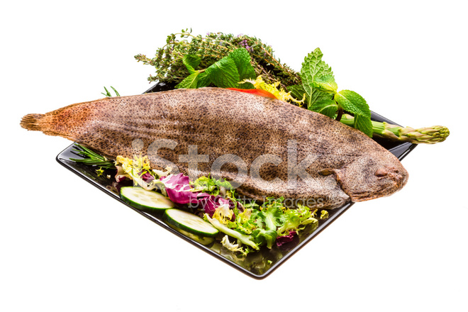 Fish dover sole stock photos for Dover sole fish