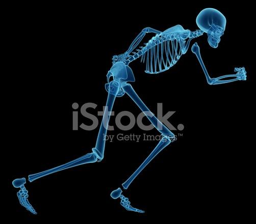 Röntgen Des Menschlichen Skeletts, Ausgeführt Stockfotos ...