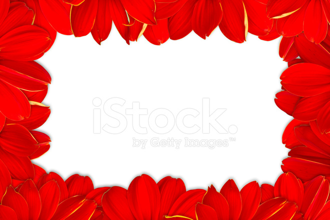 Red flowers frame on white background stock photos freeimages premium stock photo of red flowers frame on white background mightylinksfo