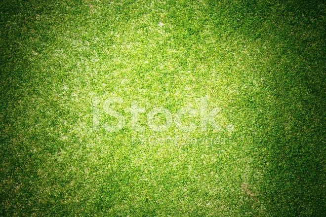 Green Grass Background Texture Golf Course stock photos ...