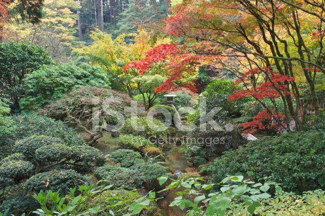 Stone lantern pagoda stream autumn portland japanese - Portland japanese garden free day ...