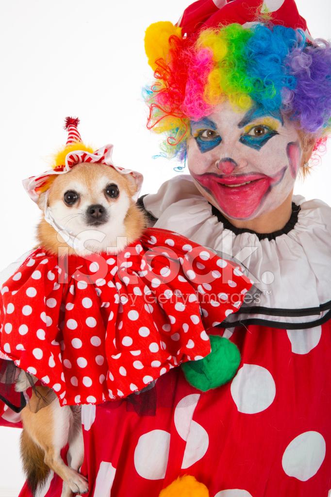 Dog Clown Collar