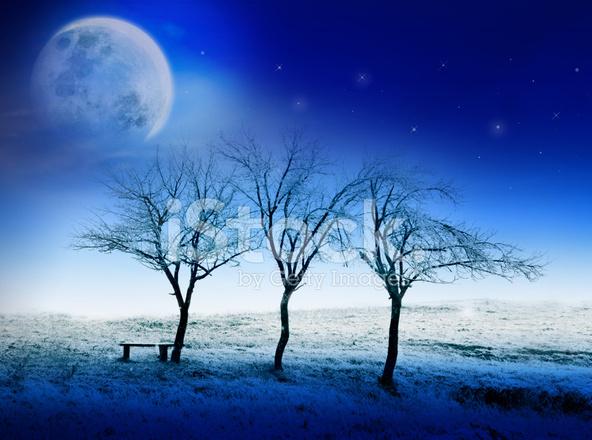 christmas or new year card winter night fairytale scene