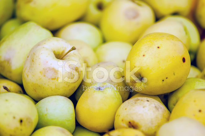 freshly harvested colorful crimson crisp apples on display at th stock photos
